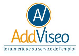 logo_addviseo_couleur